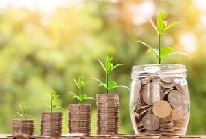 Maria Palliu consiliere Studii Finantate UK Anglia Londra Economie